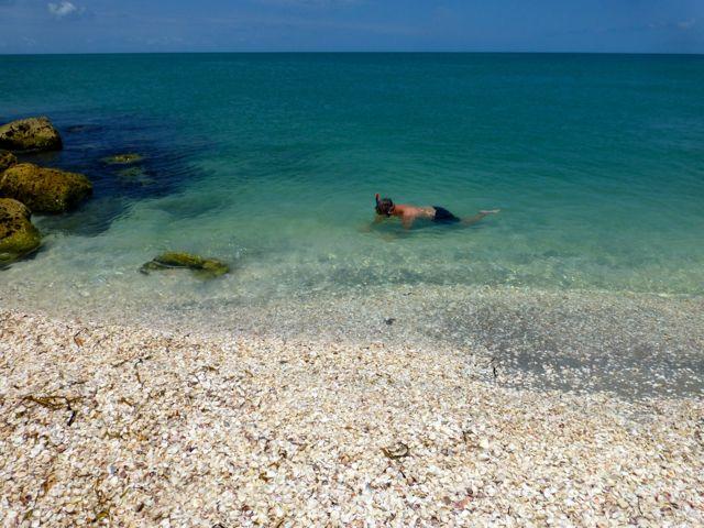 Snorkeling And Sifting For Seashells On Sanibel Captiva
