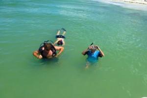 snorkel cayo costa