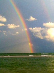 chasing sanibel rainbow