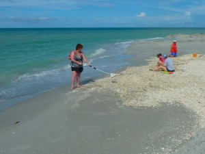 shelling Bowmans beach Sanibel