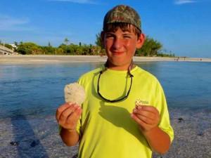 Evan sand dollar junonia