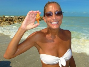 Jill Va Beach seashell