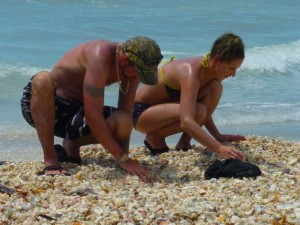 Sanibel Shell collectors florida
