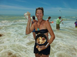 Sue St Pete Seashells