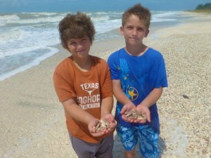 gabriel luke collect seashells