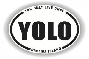 YOLO Logo small
