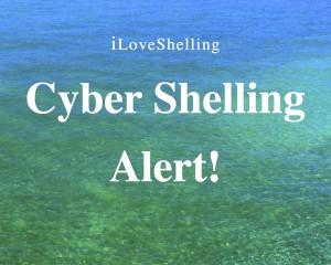 cyber shelling alert