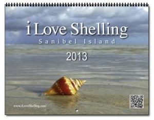 2013 iLS calendar
