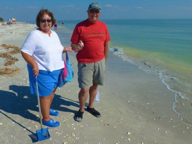 CShells Sees Seashells By The Seashore