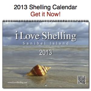 iLS-2013-calendar-icon