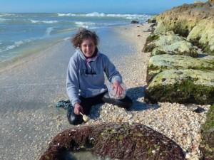 rhonda captiva seashells wetsuit