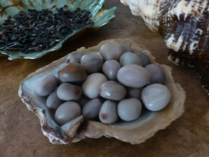 sea pearl hot beans
