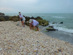 seashelling captiva