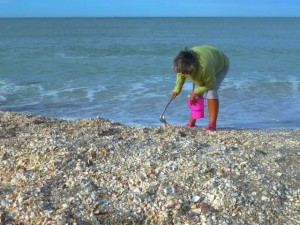 seashelling shell mound captiva