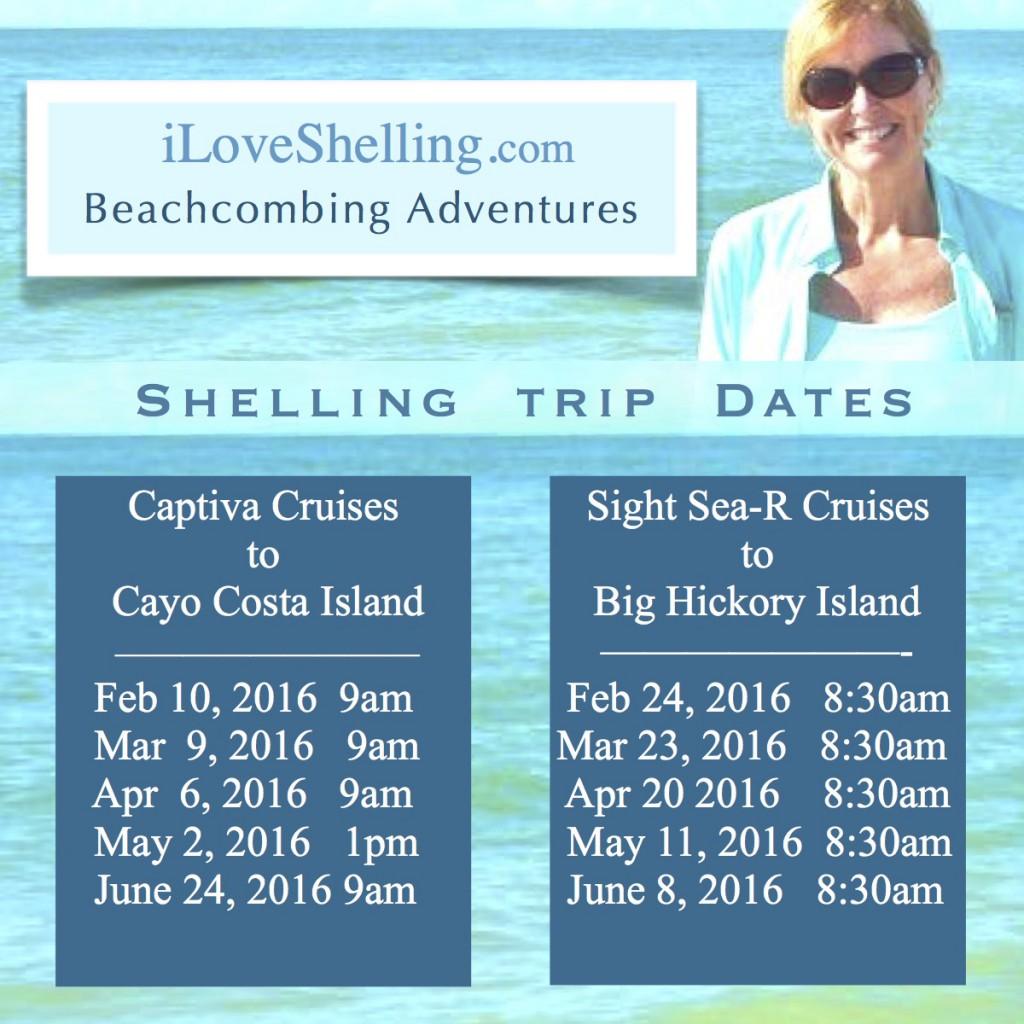 2016 beach combing tour trips