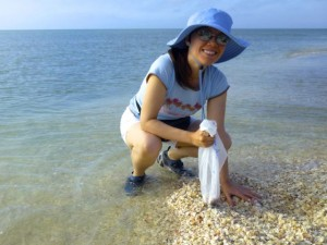 amy seashells captiva florida