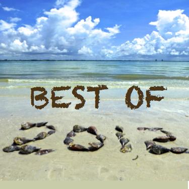 2012 Top 10 i Love Shelling Posts