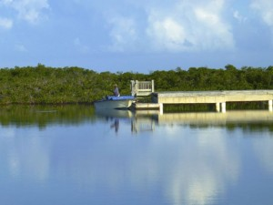 cardinal arthur boat dock