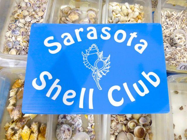2013 50th Annual Sarasota Shell Show
