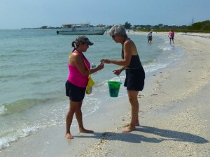giving seashells
