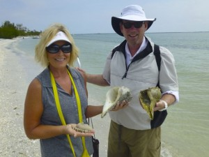 find whelks cayo florida clark