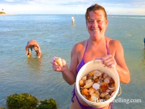 finding buckets of shells