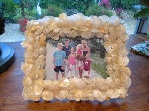 jingle shell frame sanibel