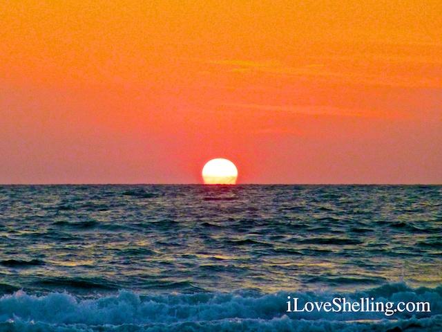 Sensational Seashells, Sunshine and Sunsets