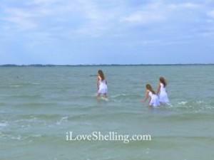 mermaid dolphins iLS