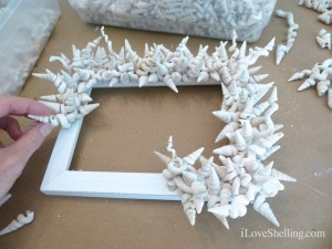 shell frame seashell craft