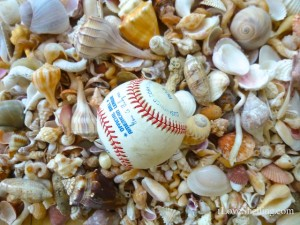 collecting baseballs seashells