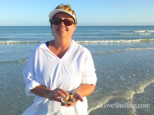 ronetta sanibel beach shells