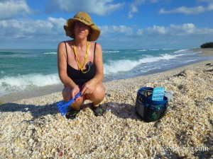 sharene pile shells bp
