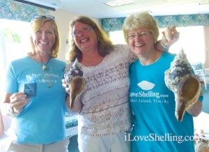 shellabaloo 2 shell winners