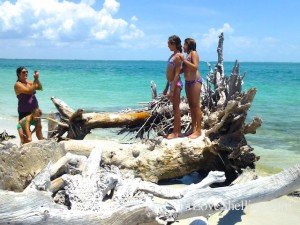tropical photo op cayo costa