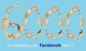 6000 facebook  likes