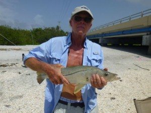 danny snook fish sanibel