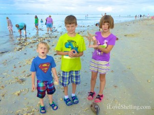kids shelling sanibel tropical storm andrea