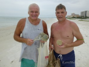 wesley ky Ace sand dollars  fort myers beach florida
