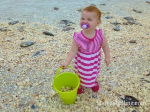 sanibel beach shell bucket baby