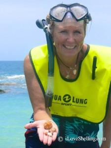 snorkeling for seashells cuba