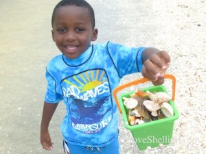 boy with seashell bucket captiva