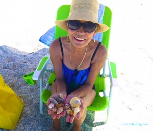 donna clermont fl visit captiva seashells