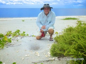donnie with turtle egg shells from hatching on beach
