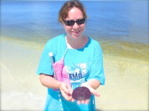 jennifer live arrowhead sand dollar shellabaloo 3 cayo