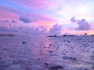 pink sky reflection sanibel florida sunset