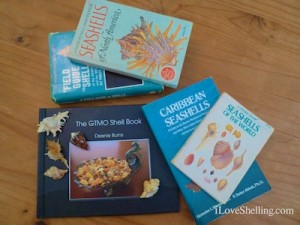 seashell shell books research