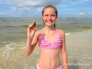 Holly sanford florida horse conch juvie