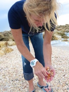 blogger pam shelling sanibel captiva blind pass