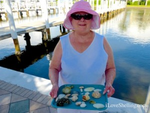 jan kentucky visit captiva seashells